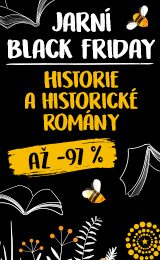 black friday historie
