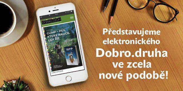 Přivítejte další vydání elektronického magazínu DOBRO.DRUH! - titulní obrázek