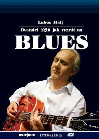 12 fíglů jak vyzrát na blues - Kytarová škola - DVD - Malý Luboš
