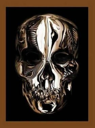 Alexander McQueen : Savage Beauty - Andrew Bolton