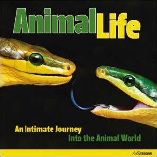 Animal Life - Heidy Hans-Jurgen