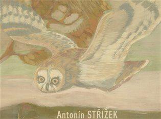 Antonín Střížek - Martin Dostál