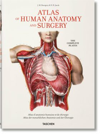 Bourgery. Atlas of Human Anatomy and Surgery (new ed.) - Henri Sick, Jean-Marie Le Minor