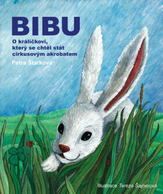 Bibu - Petra Štarková - e-kniha