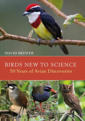 Birds New to Science: 50 Years of Avian Discoveries - Brewer David