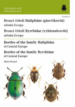 Brouci čeledi plavčíkovití (Haliplidae) a vyklenulcovití (Byrrhidae) - Milan Boukal
