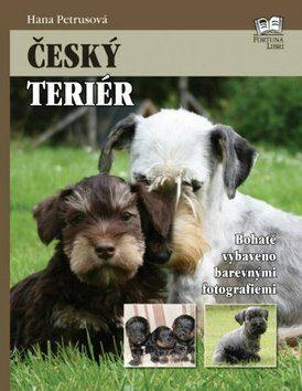 Český terier - Hana Petrusová