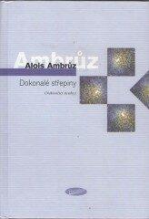 Dokonalé střepiny (Nekončící úvahy) - Alois Ambrůz