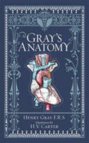 Gray´s Anatomy - Gray Henry