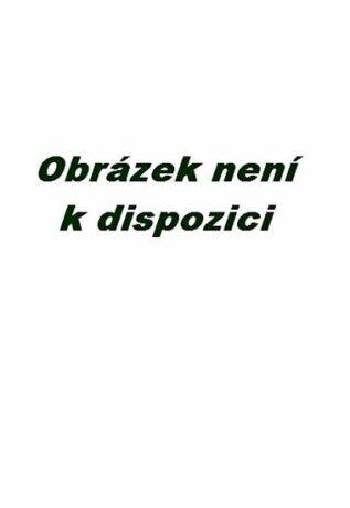 Hlazení duše (v anglickém jazyce) - Václav Budinský