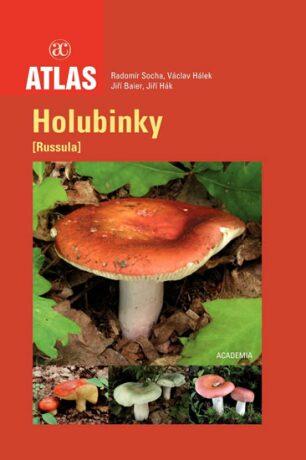 Holubinky - Radomír Socha