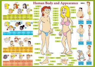 Karta Human Body and Appearance - Eva Tinková