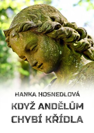 Když andělům chybí křídla - Hanka Hosnedlová