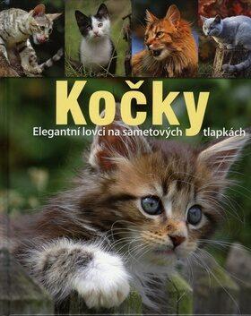 Kočky -