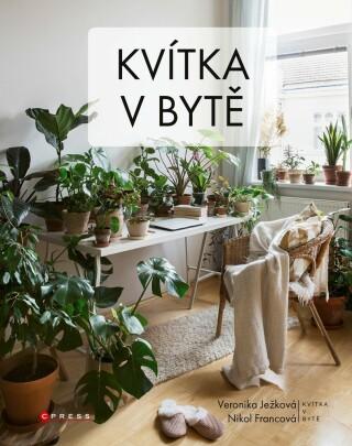 Kvítka v bytě - kolektiv autorů