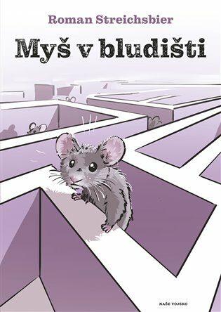 Myš v bludišti - Roman Streichsbier