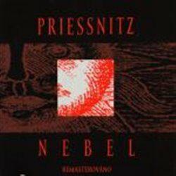 Nebel - Priessnitz - audiokniha