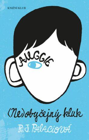 (Ne)obyčejný kluk - Raquel J. Palaciová