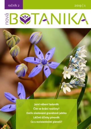 Nová Botanika - Botanica Nova, z.s. a kolektiv autorů - e-kniha