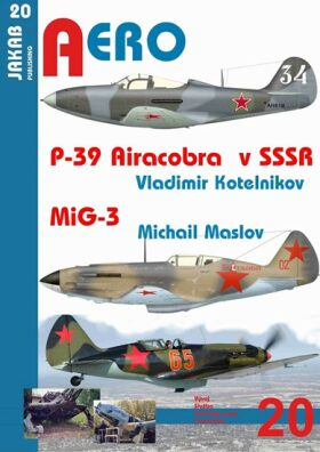 P-39 Airacobra v SSSR / MiG-3 - Vladimir Kotelnikov, Maslov Michail