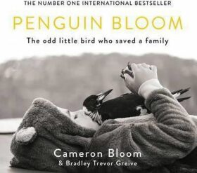 Penguin Bloom : The Odd Little Bird Who Saved a Family - Bloom Cameron