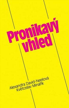 Pronikavý vhled - Květoslav Minařík - e-kniha