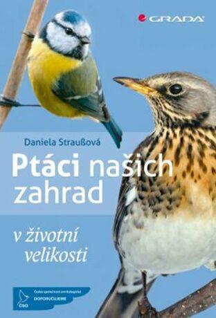 Ptáci našich zahrad v životní velikosti - Daniela Straußová