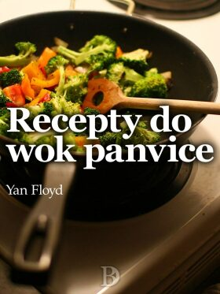 Recepty do wok panvice - Yan Floyd