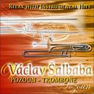 Relax with instrumental hits - Pozoun - CD - Šalbaba Václav