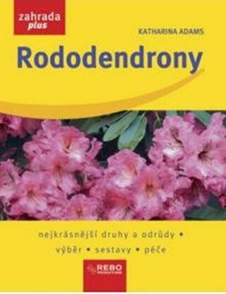 Rododendrony - Adams Katharina