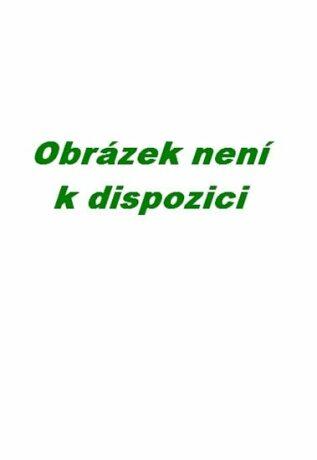 Texty - Tomáš Hudec