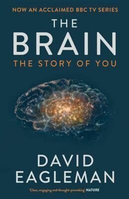 The Brain, The Story of You - David Eagleman