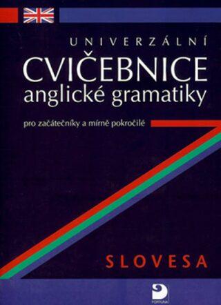 Univerzální cvičebnice anglické gramatiky - Kácha Petr
