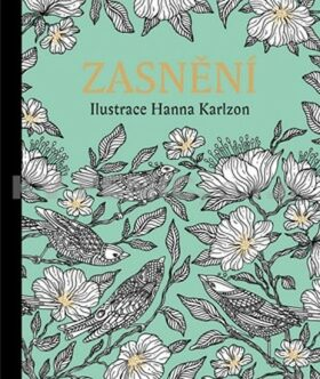 Zasnění - Antistresové omalovánky - Hanna Karlzon