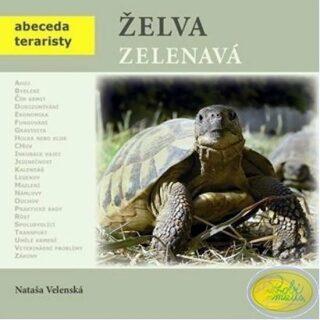 Želva zelenavá - Nataša Velenská