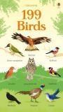 199 Birds - Hannah Watson