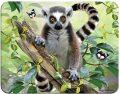 3D MAGNET-Lemur - TRIGO CZ