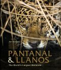 Pantanal and Llanos - Jan Dungel