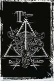 Harry Potter - Deathly Hallows Graphic -