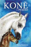 Koně - pexeso - Tereza Šrámková