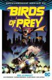 Birds of Prey 1- Kdo je Oracle? - Julie Bensonová, ...