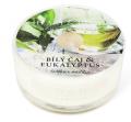 Svíčka Heart & Home v mističce - Bílý čaj & eukalyptus (38 g) -