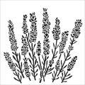TCW šablona 30,5 x 30,5 cm - Lavender - TCW
