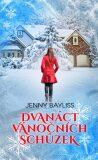 Dvanáct vánočních schůzek - Jenny Bayliss