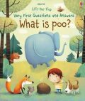 Lift-The-Flap Very First Questions & Answers : What is Poo? - Katie Daynes