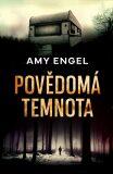 Povědomá temnota - Amy Engel