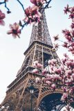 Plakát Paris - Eiffel Tower - BKS