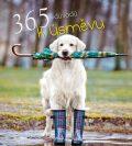 365 důvodů k úsměvu - Slovart