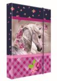Heft box A4 Junior kůň - Karton P+P