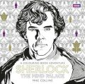 Sherlock: The Mind Palace Colouring Book - Collins Mike